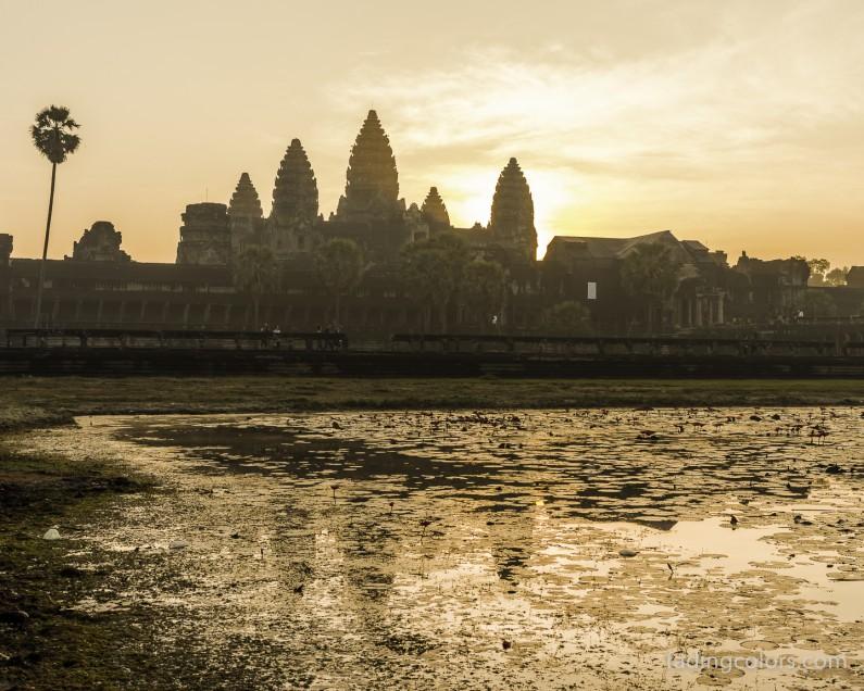 AngkorHawi-9614