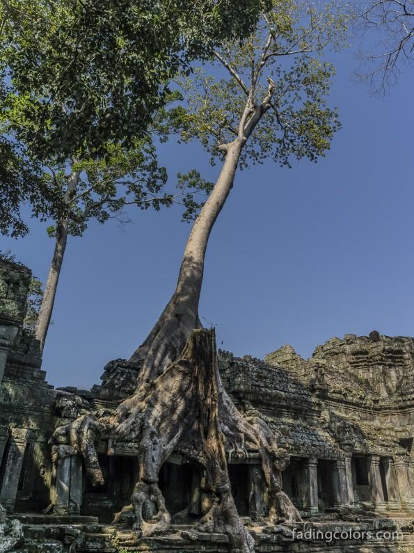 AngkorHawi-9824