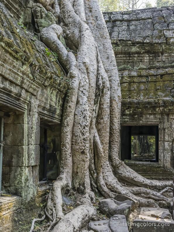 AngkorHawi-9955